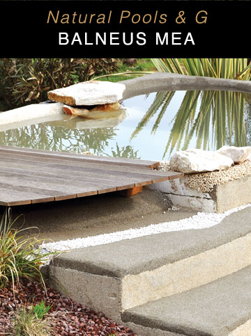 designing of natural swimming pools